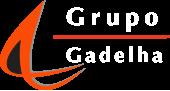 Grupo Gadelha